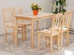 Laud Tim 100x60 ja 4 tooli