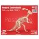 3D puzzle Parasaurolophus